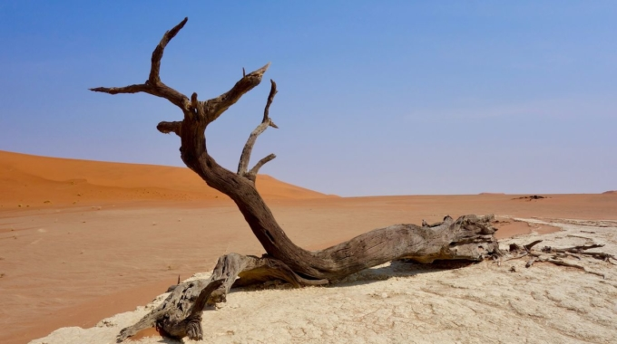 Expertise H2020 – Services climatiques pour l'Afrique