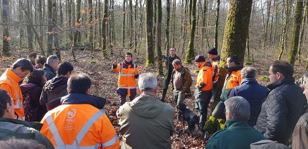 Gestion durable des sols et de l'exploitation forestière